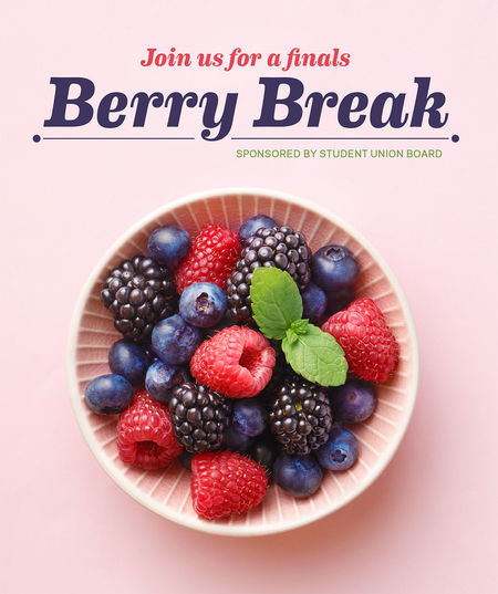 Berry Break Web